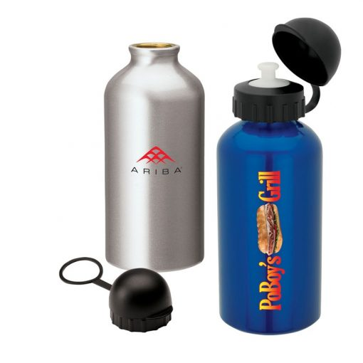 16.9 oz. Domed Flask
